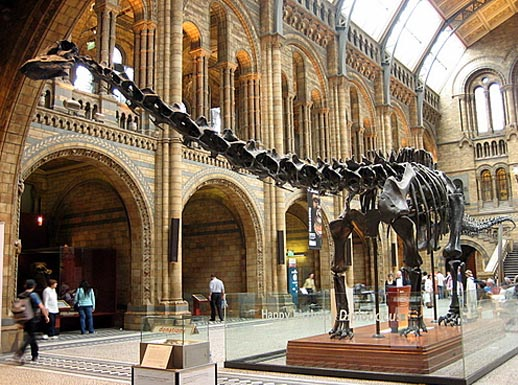 museo de historia natural londres