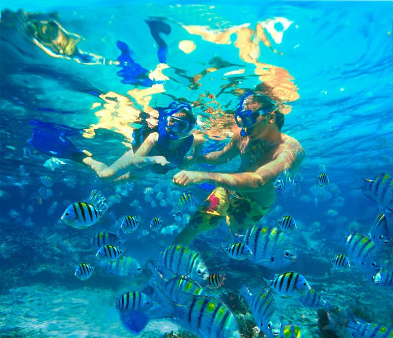 Estímulos multisensoriales para empresas turísticas