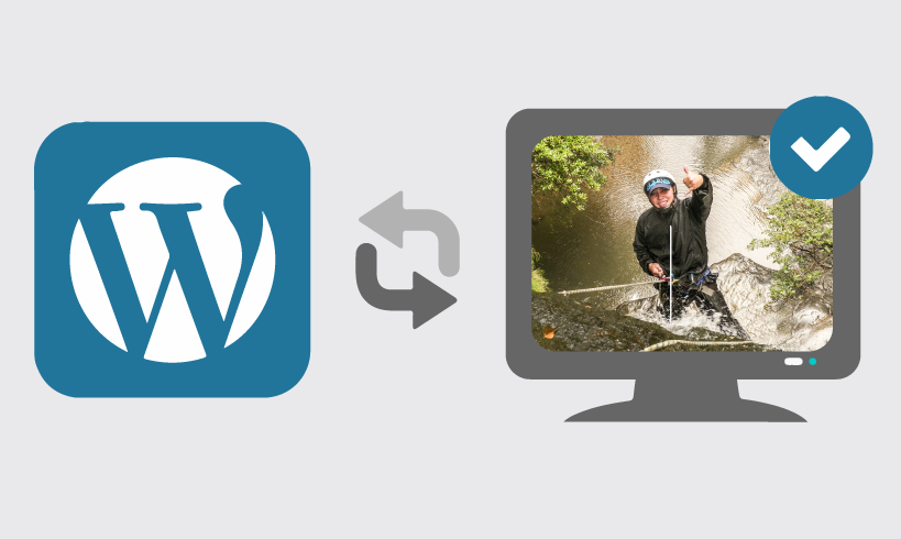 Actualizar wordpress, temas y plugins