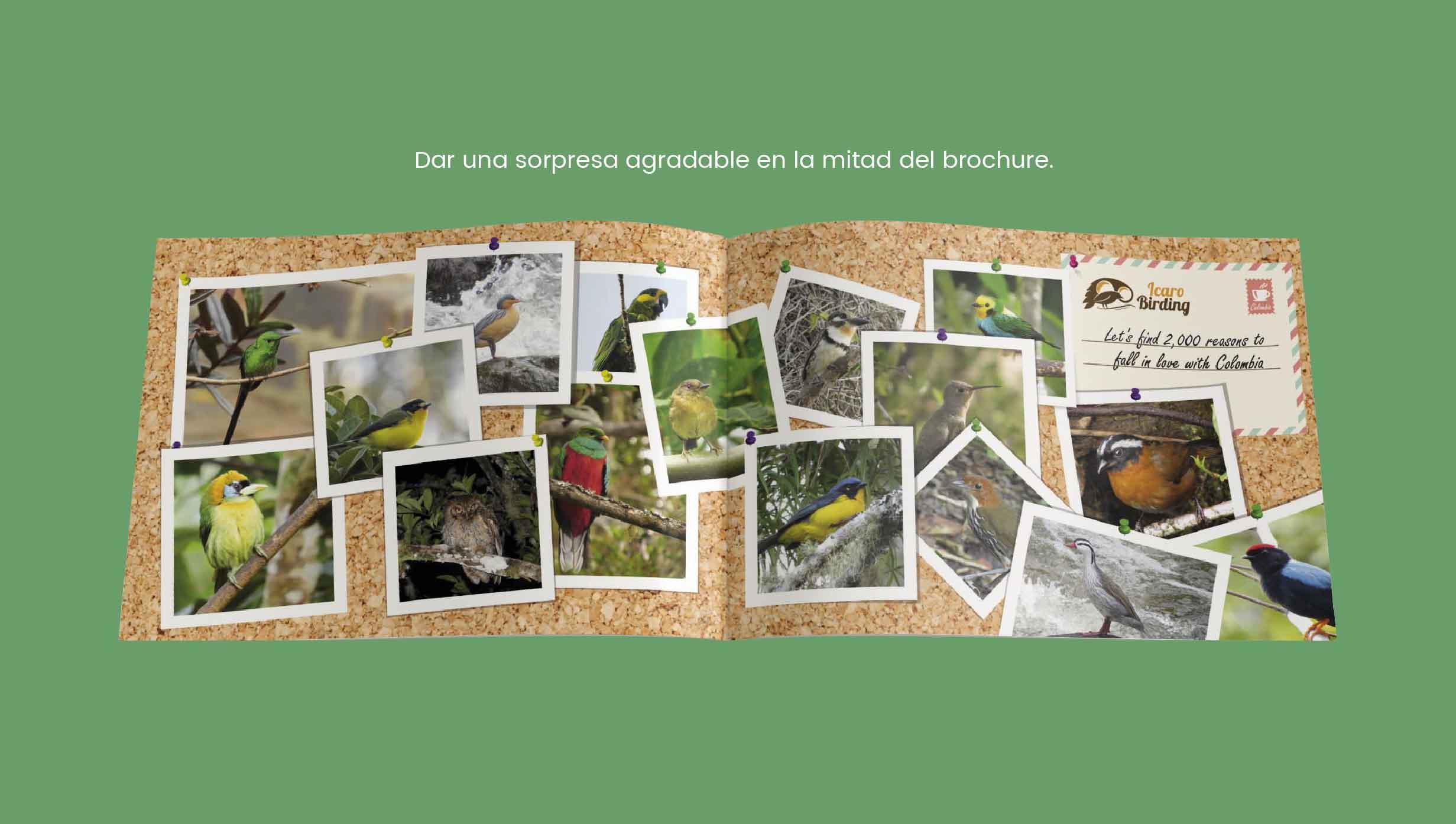 brochure publicidad turistica